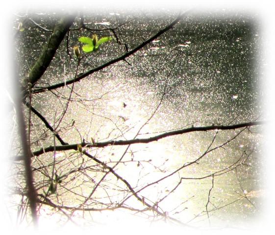 Bild5.4 Small